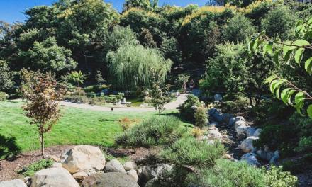 Japanese Friendship Garden at Balboa Park